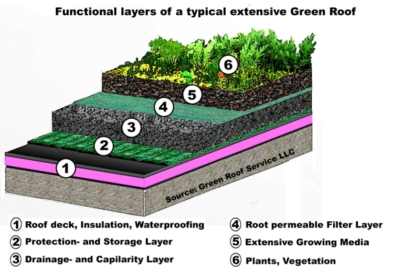 Green Roofs How What And Why