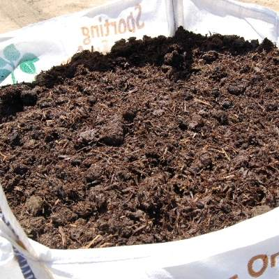 Adding Organic Matter In Autumn Allotments Vegetable Gardens